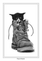 Puss In Boots by Rifty