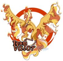Valor by xWhiteDreamsx