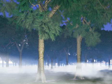 Fog and trees by archizero