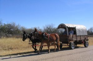 Covered wagon 1 by Darkside0326
