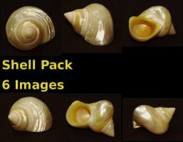 Shell Pack by pricecw-stock