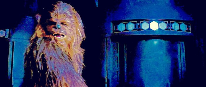Peter Mayhew plays Chewbacca by ColonelFlagg