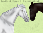 Sandhill Crane X Chronological by Spotted-Tabby-Cat