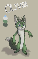 Oliver Ref by wanton-fox