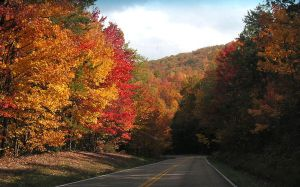Smokies in the Fall by photowizard