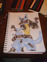 Lucario and Riolu by squishy-jelly-apple
