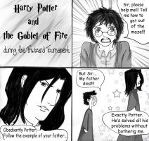 Harry and Severus by Femkeneri