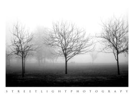 The Morning After by UrbanRural-Photo