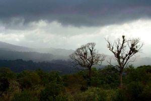 Arenal by l337Jacqui