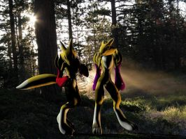 Anna and Renamon in the Forest by Rachidna