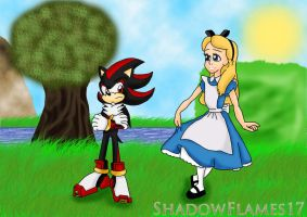 Alice and Shadow by ShadowFlames17