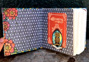 Niamh's Travel Spellbook (2) by niamhwitch