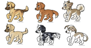 Adoptable Pups (realistic) -CLOSED- by xWolfPrincex