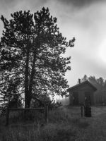 Fog House by JANorlin
