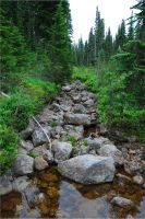 Mountain Stream by btmccord