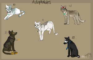 Point Adoptables by oOBouncingheartOo