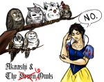 Akaashi and the Six Owls by SailorAnime
