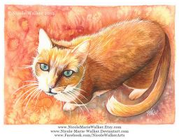 Psychedelic Cat by Nicole-Marie-Walker