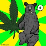 Stoned Bear by Creepy-Ninja