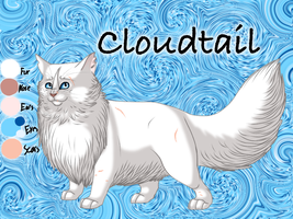 Cloudtail of ThunderClan - Faded Boundaries by Jayie-The-Hufflepuff