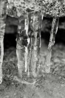 More Tennessee Icicles by tylerscottsmith