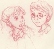Harry and Hermione by MiraElizabeth
