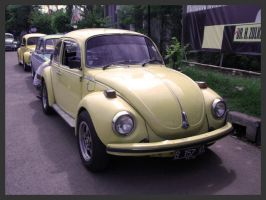 Indonesia VW Fest - Type 1 05 by atot806