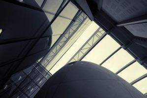 Natural History Museum Darwin Centre by zingmatter