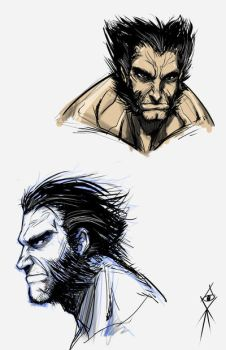QUICKY SKECTH - WOLVERINE by MLAYCO