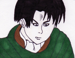 Levi by tabby25