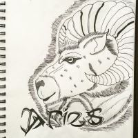 Aries by DinomanInc