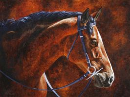Hanoverian Dressage Horse Portrait by ForestWildlifeArt