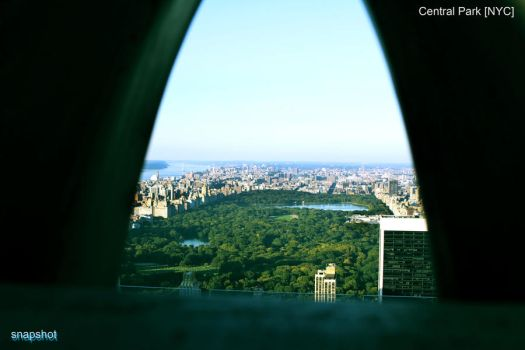 Central Park NYC by julzkay