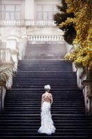 Weddings by FFrederik