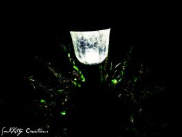This Little Light Of Mine by forgivenfate