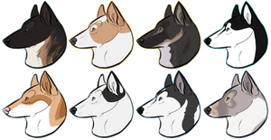 Sibe Confo Headshots by Canidae-Mayhem