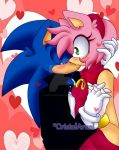 New SonAmy 2015 by CristalArual