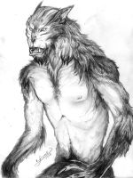 The WOLFMAN by aichan25