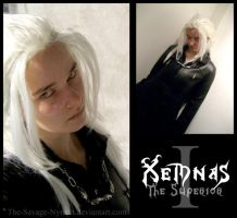 Xemnas - The Superior by The-Savage-Nymph
