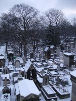 Cemetery under snow by whynotastock