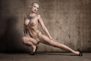 shaved II by creativephotoworks