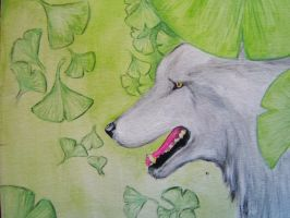 Wolf among the Ginkgo by MasterGunyer