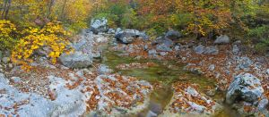 Paklenica creek by ivancoric