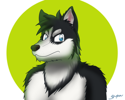 Husky wolf dog something by gupa507
