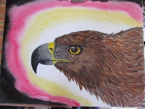 Golden Eagle Step 5 by akyta680