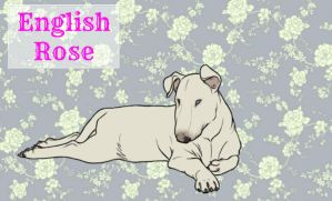 {Kennel Name} English Rose by CaptainV0dka