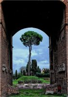 Rome by Photoarus