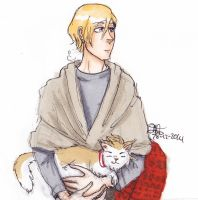 APH Norway and Dencat by AnnHolland