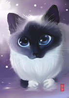 Apofiss fanart Cat by Plume-Neko