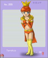 Pokedex Gijinka Torchic by Designy